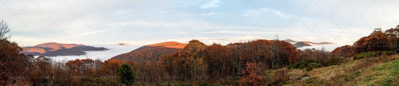 Panorama Of The Shenandoah Valley: Stock Photos
