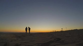 Couple On Beach At Sunset: Stock Footage