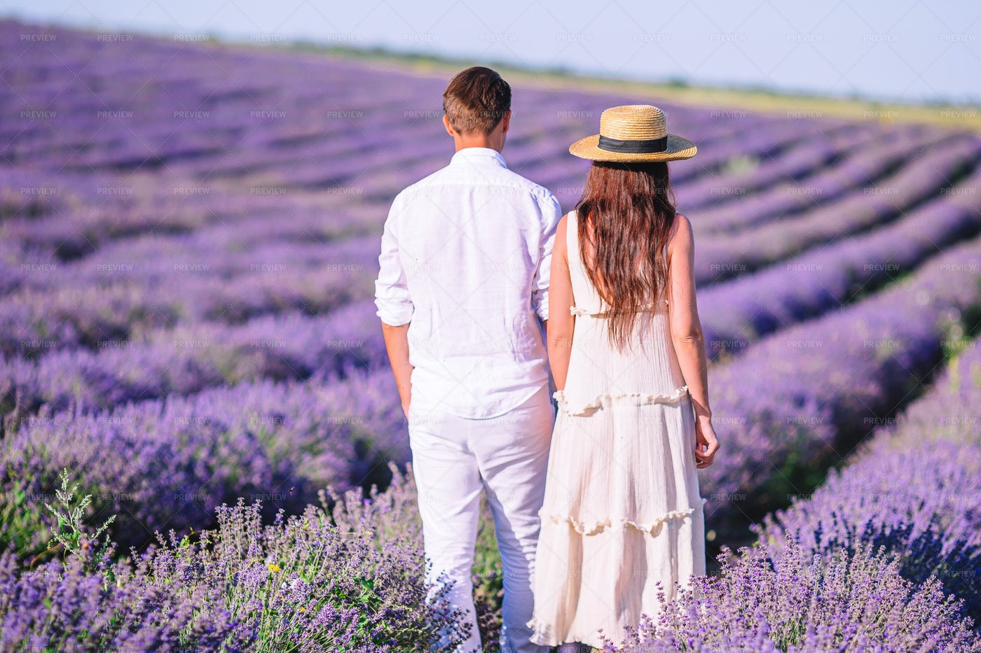 Couple Amongst The Lavenders: Stock Photos