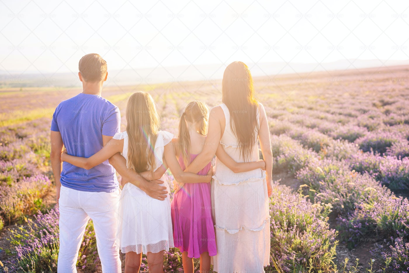 Family In Lavender Field: Stock Photos