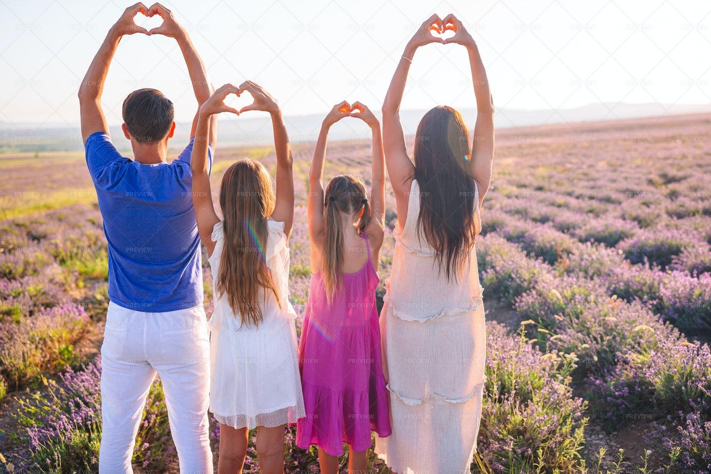 Family Lavender Field Trip: Stock Photos