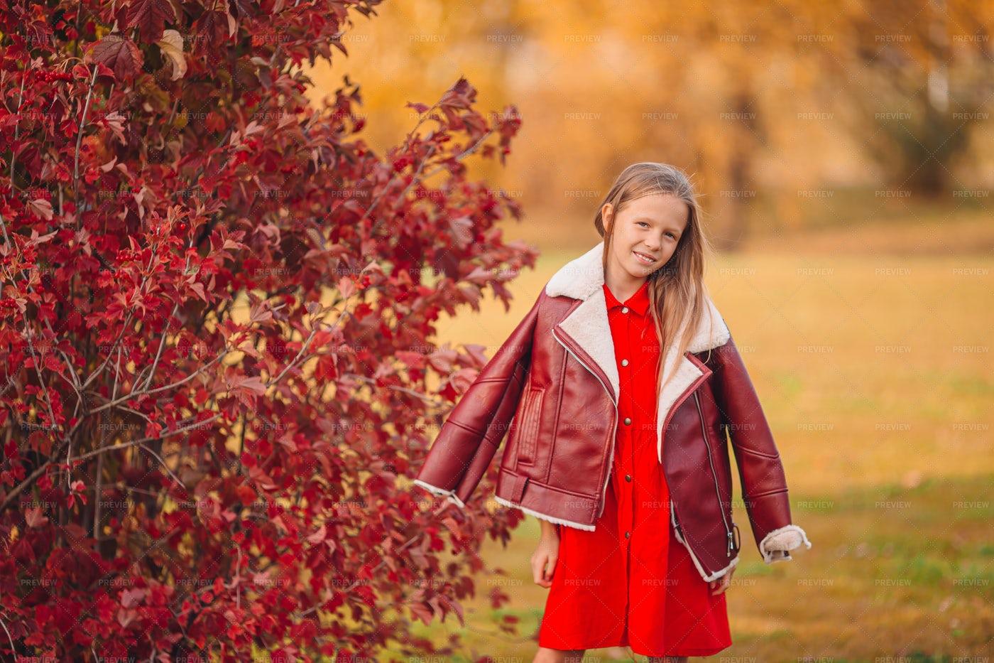 Girl In Autumn Park: Stock Photos