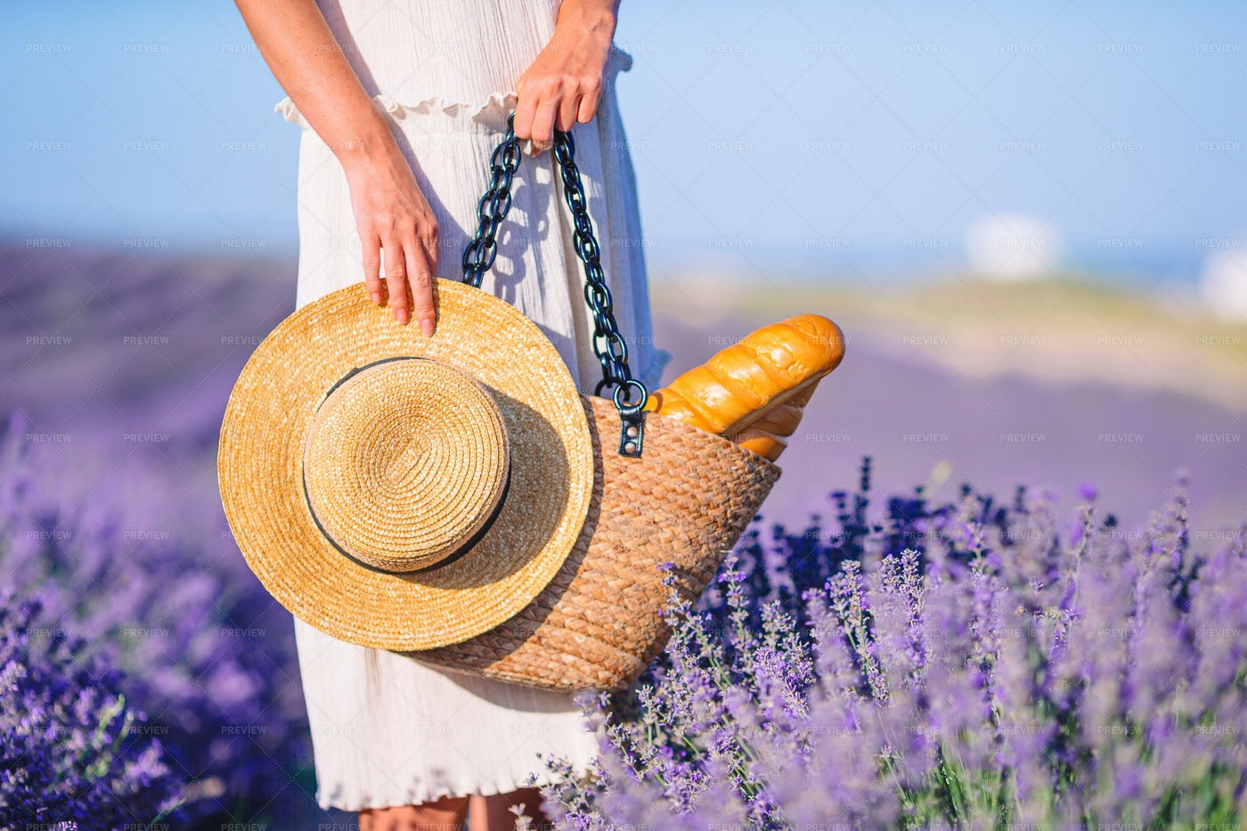 Bag And Hat Amongst Lavenders: Stock Photos