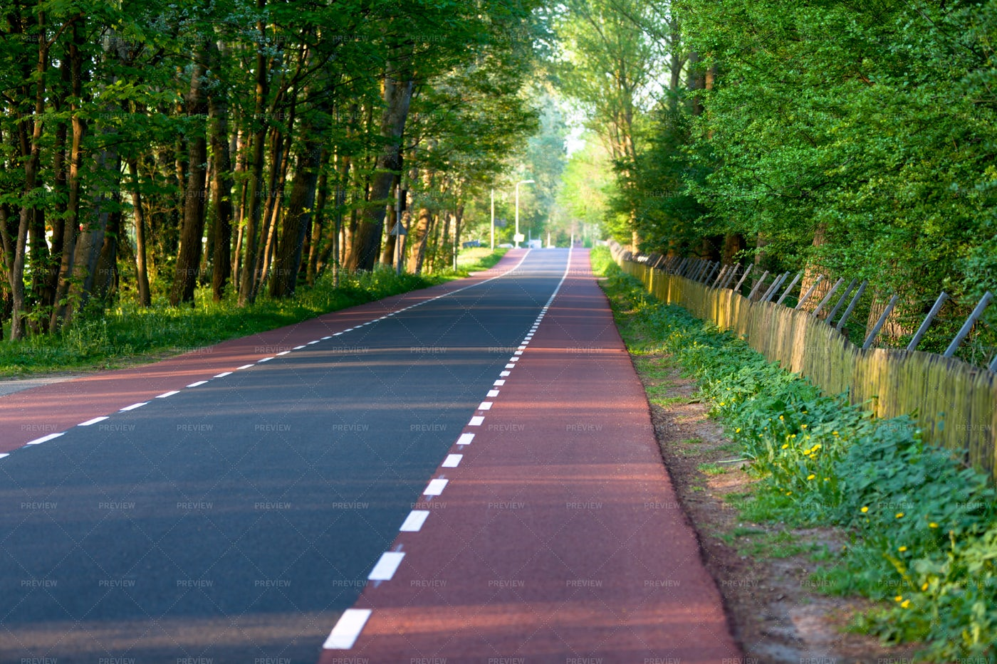 Empty Road With Bike Paths: Stock Photos