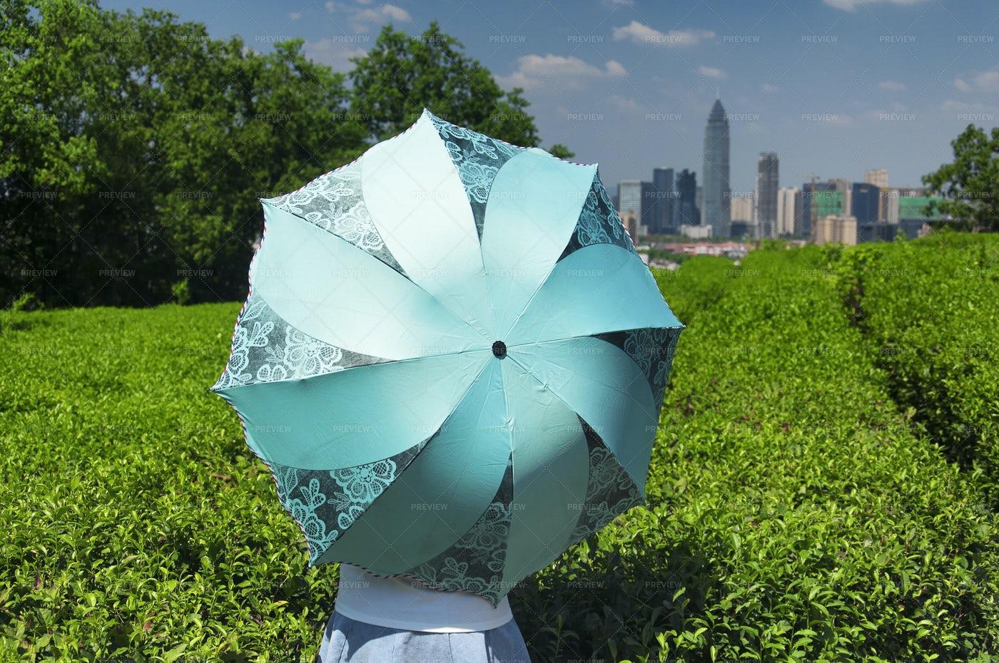 Holding A Blue Umbrella: Stock Photos