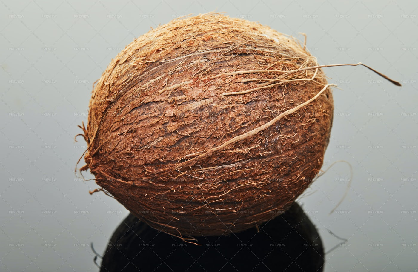 A Whole Coconut: Stock Photos