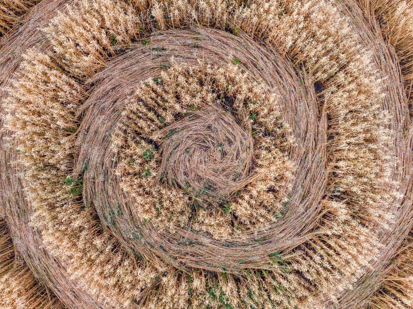 Crop Circles Aerial Close-Up: Stock Photos