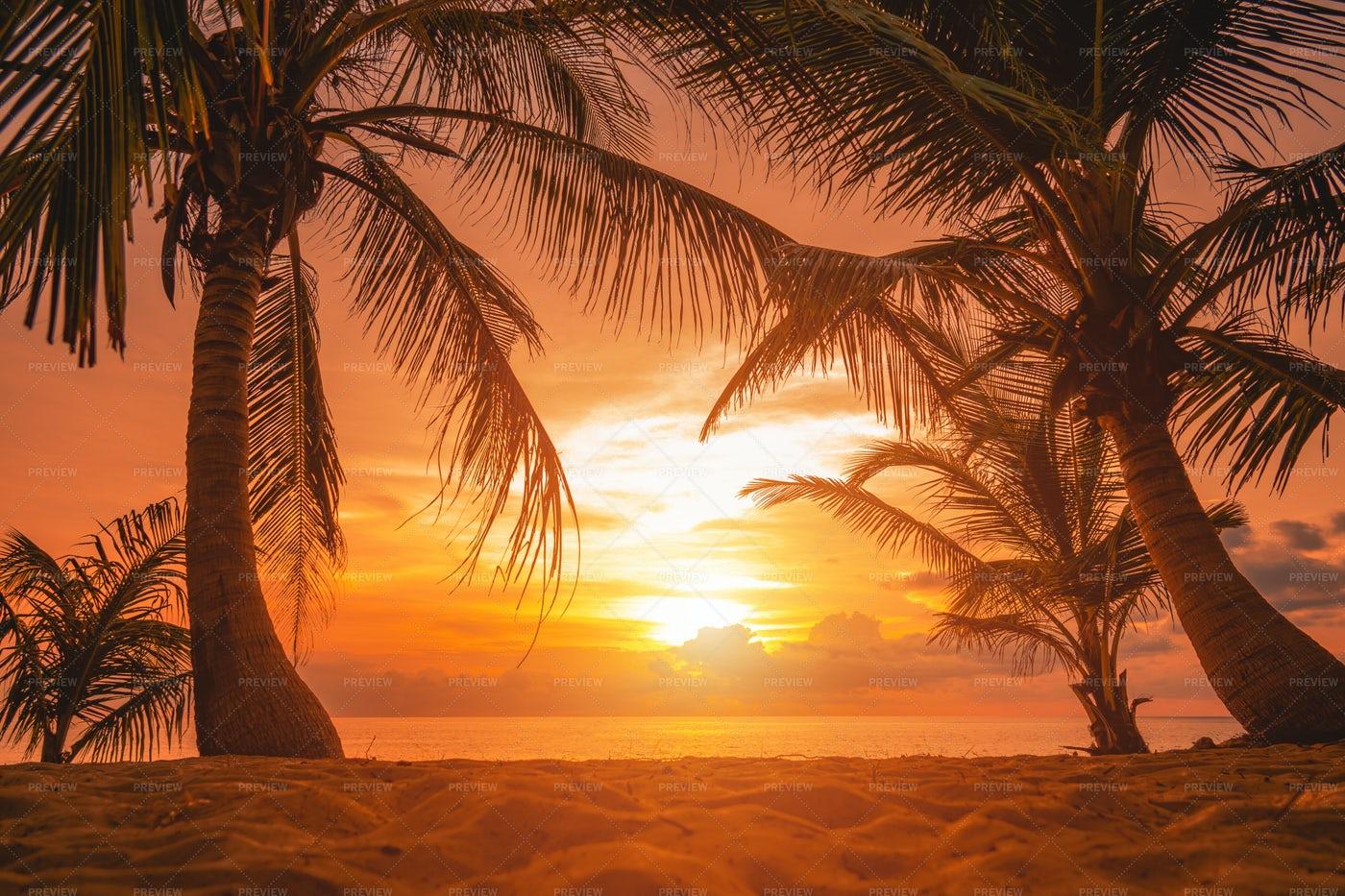 Stunning Phuket Sunset: Stock Photos