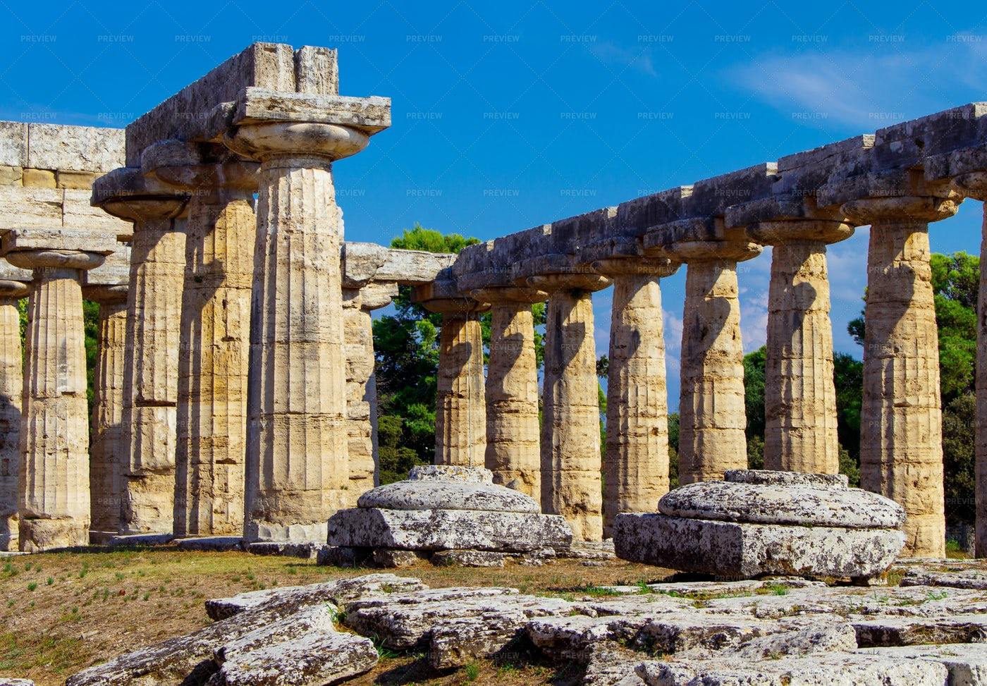 Greek Temple Detail, Paestum, Italy: Stock Photos