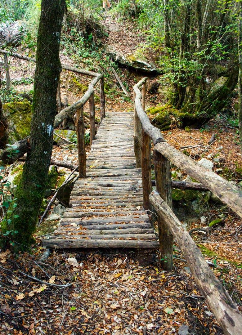 Rustic Forest Bridge: Stock Photos