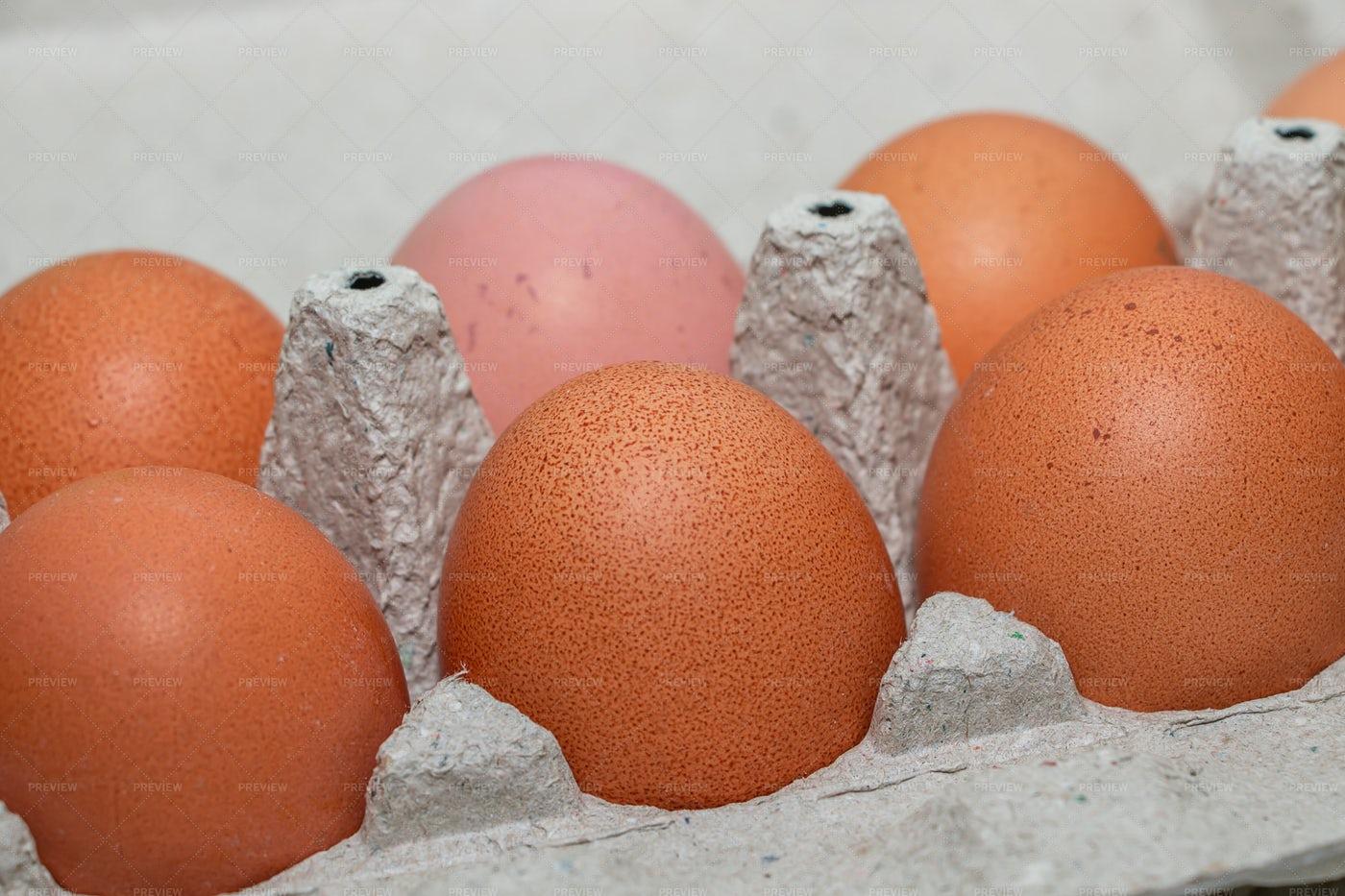 Tray Of Brown Eggs: Stock Photos