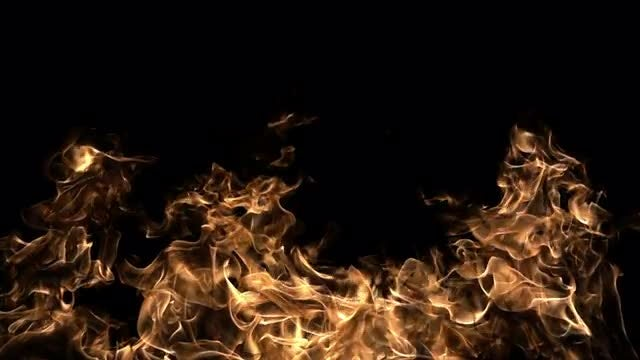 Huge Flames On Black Background: Stock Video