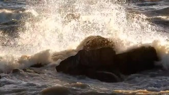 Waves Crashing Into A Rock : Stock Video