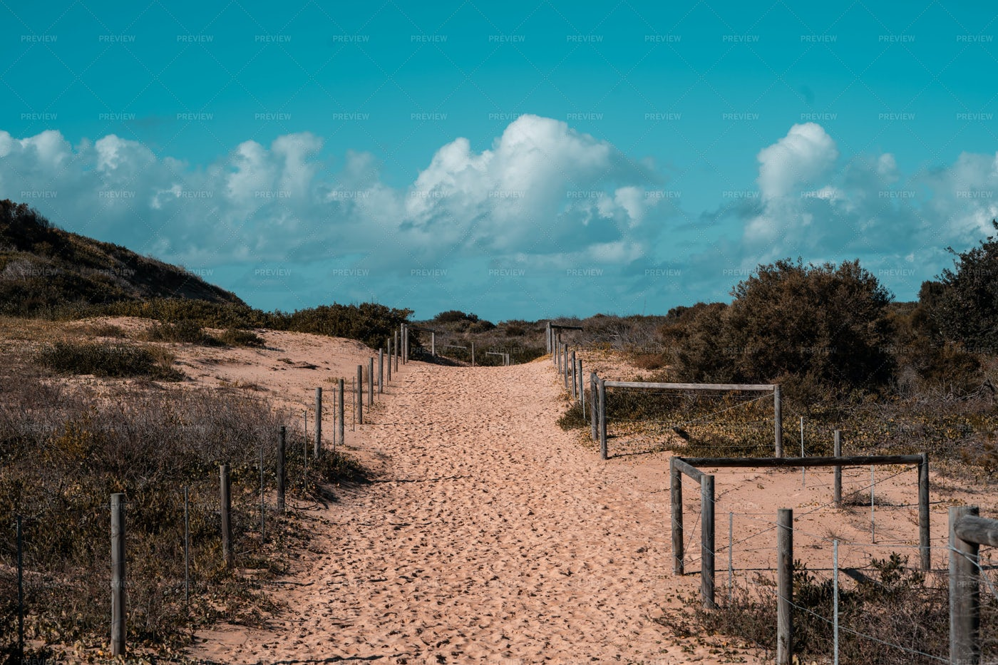 Desert Path: Stock Photos