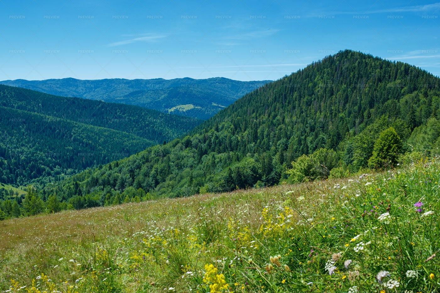 Green Mountain Hills: Stock Photos