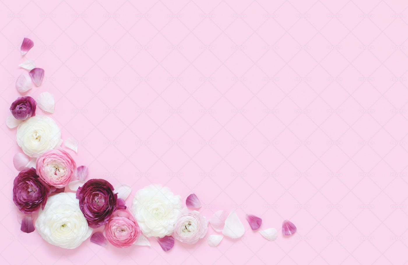 Pink And White Flowers Background: Stock Photos