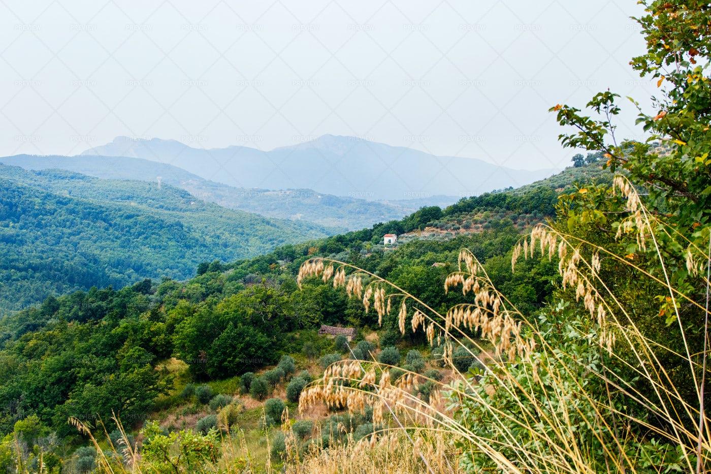 Cilento National Park: Stock Photos