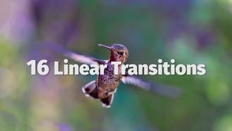 Linear Transitions: Premiere Pro Templates