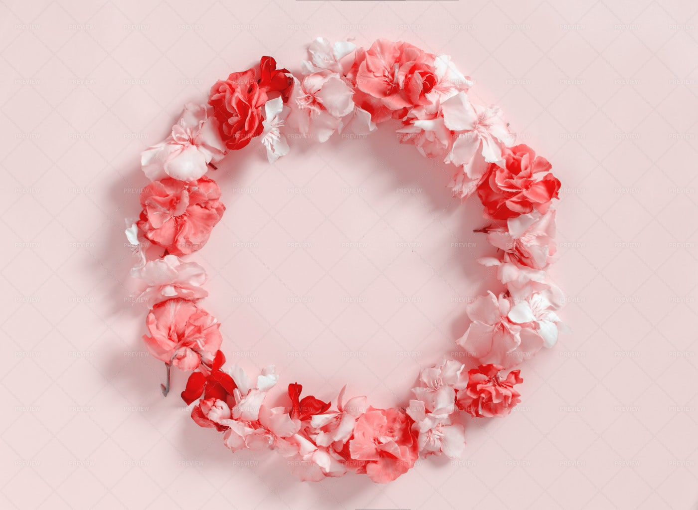 Frame Of Pink Flowers: Stock Photos