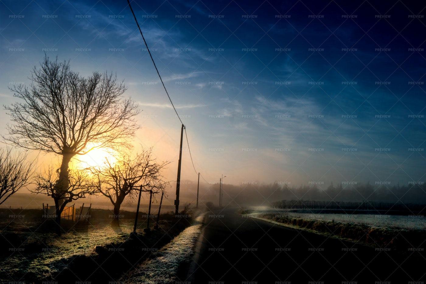 Winter Morning: Stock Photos