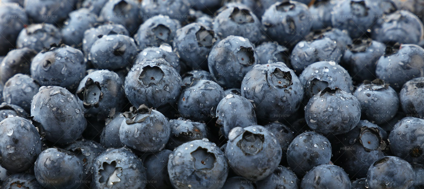 Background Of Washed Blueberries: Stock Photos