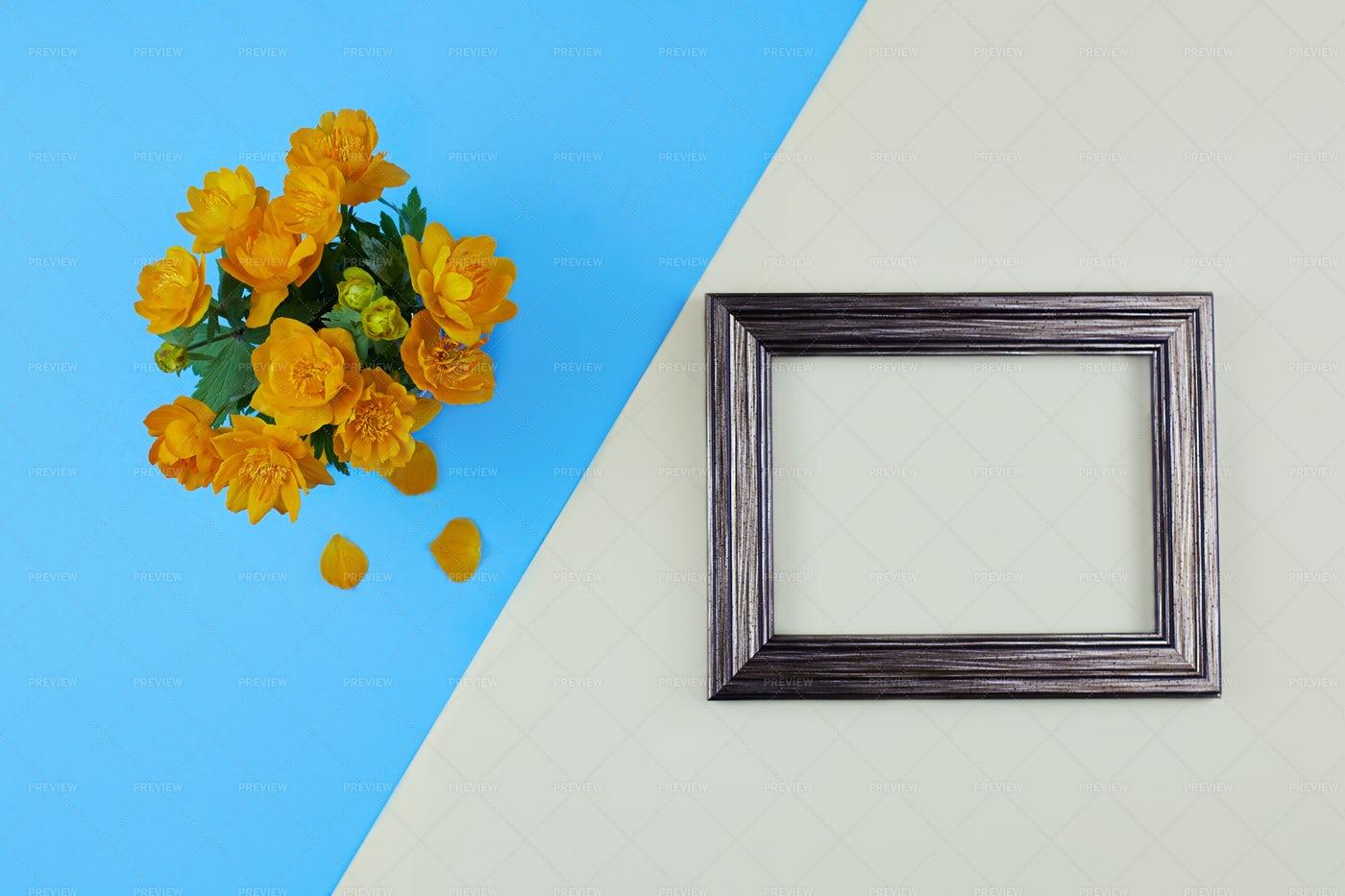 Trollius Or Globeflower: Stock Photos