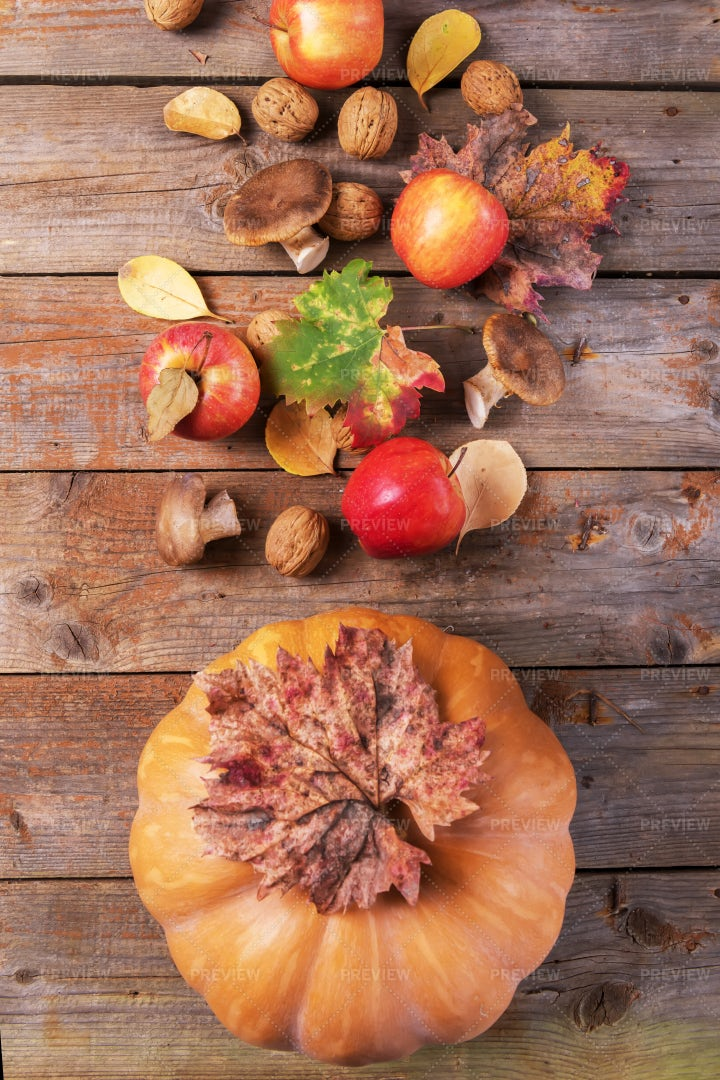 Fall Harvest Background: Stock Photos