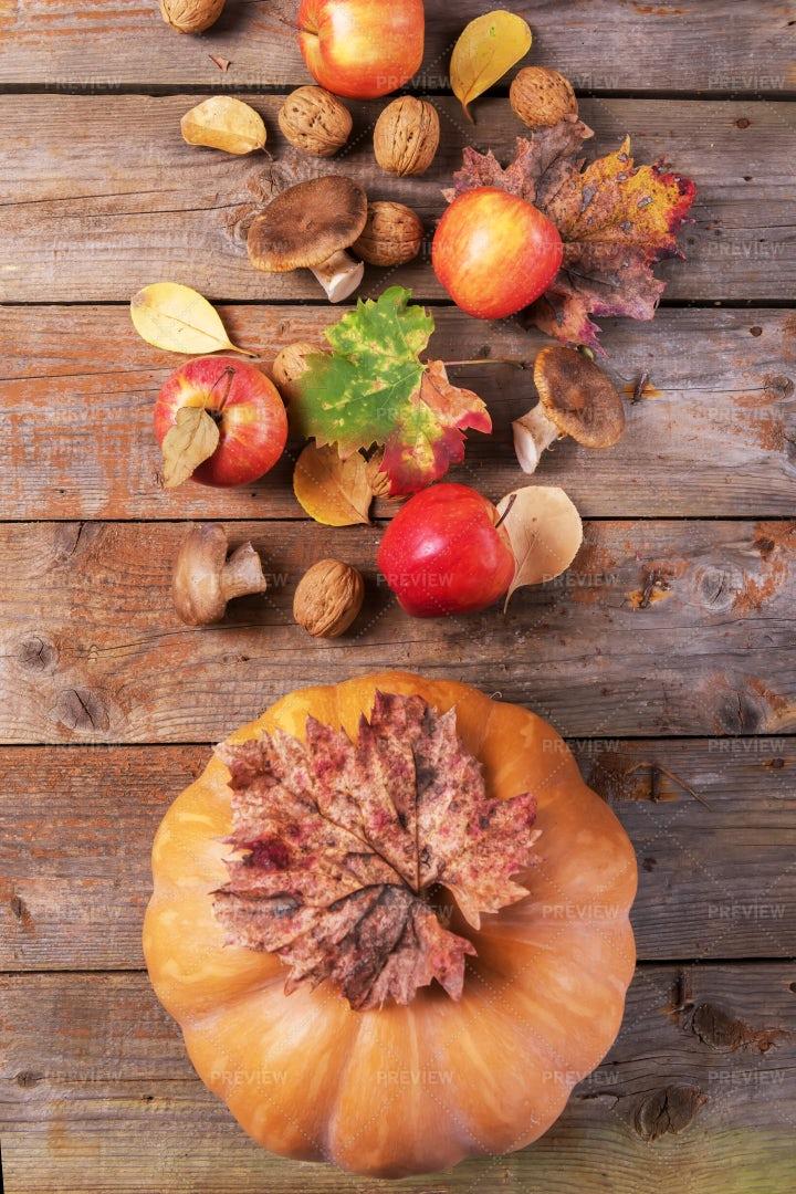 Fall Harvest Background: Stock Photos
