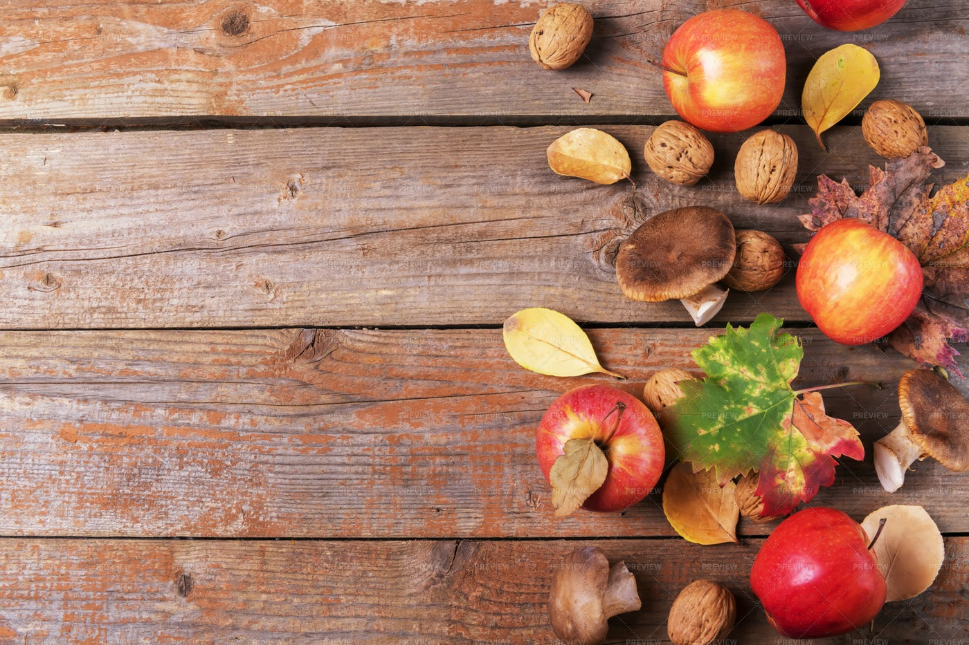 Mushrooms, Apples, Leaves And Walnuts: Stock Photos