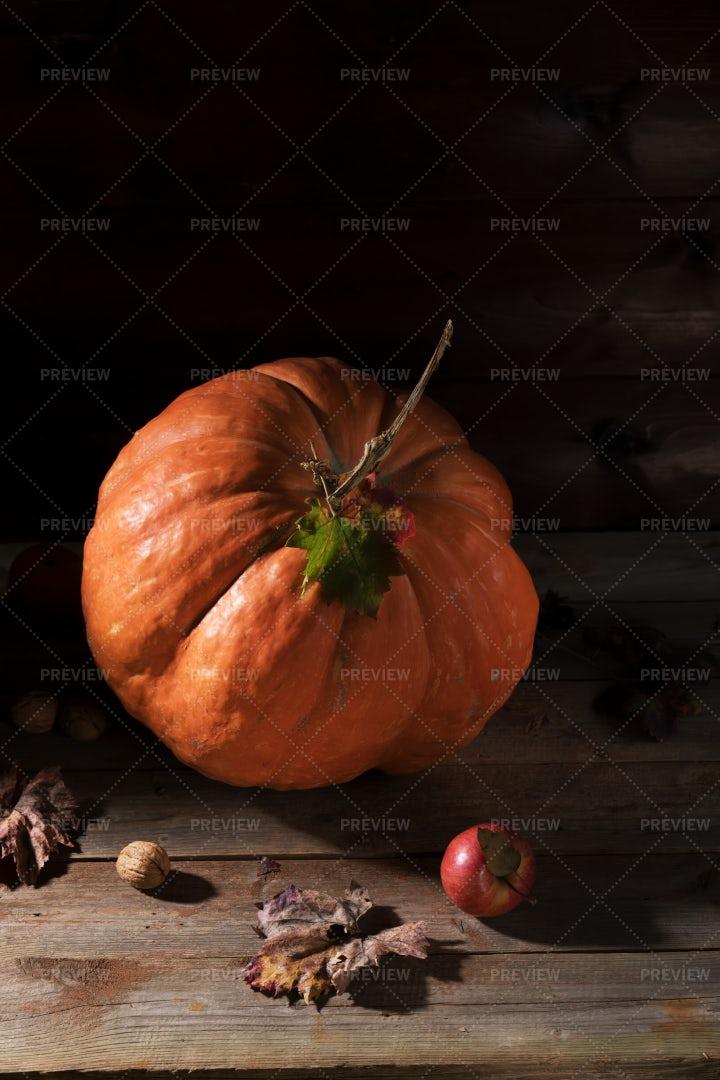 Orange Big Pumpkin: Stock Photos