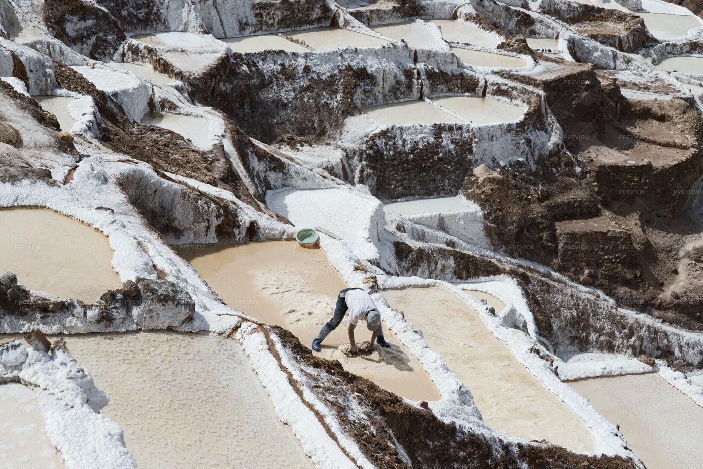 Worker Collecting Salt: Stock Photos