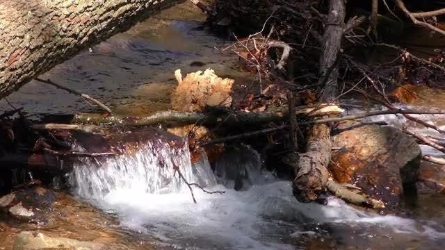 Flowing Creek Water Pack: Stock Video