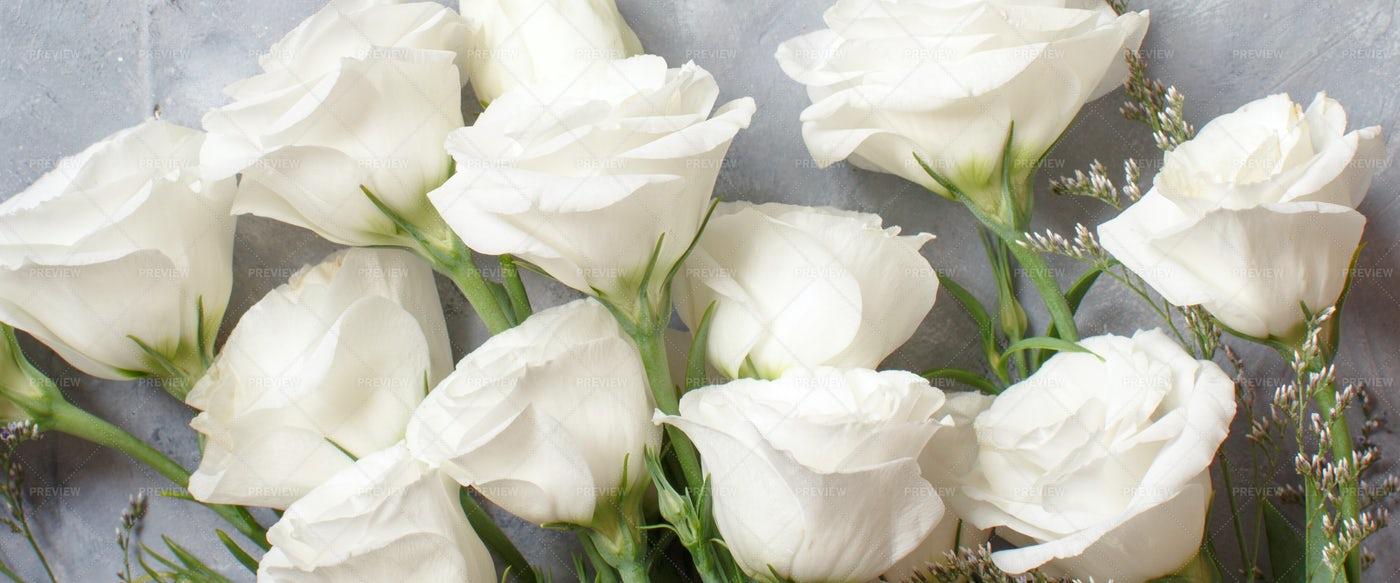 White Flowers On  Grey: Stock Photos