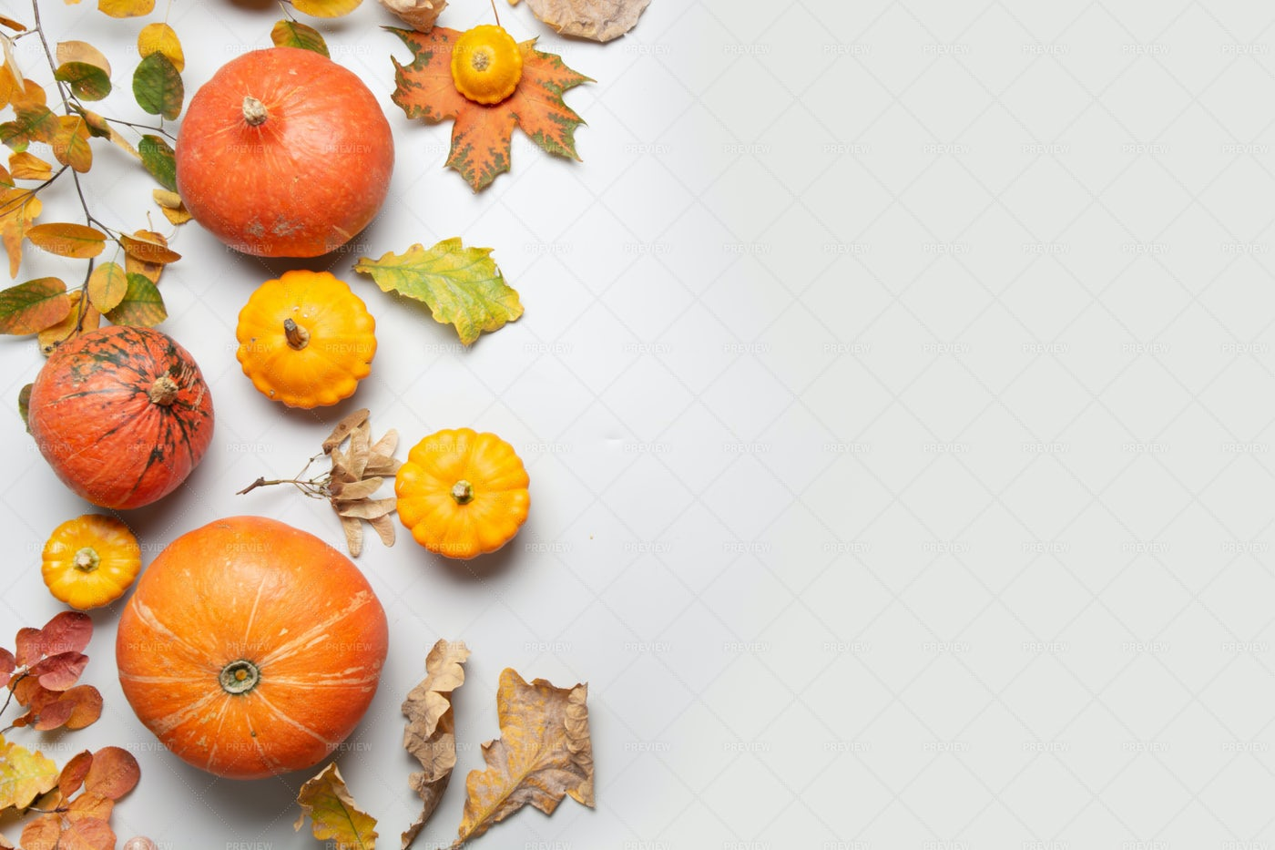 Pumpkin And Maple Leaves: Stock Photos