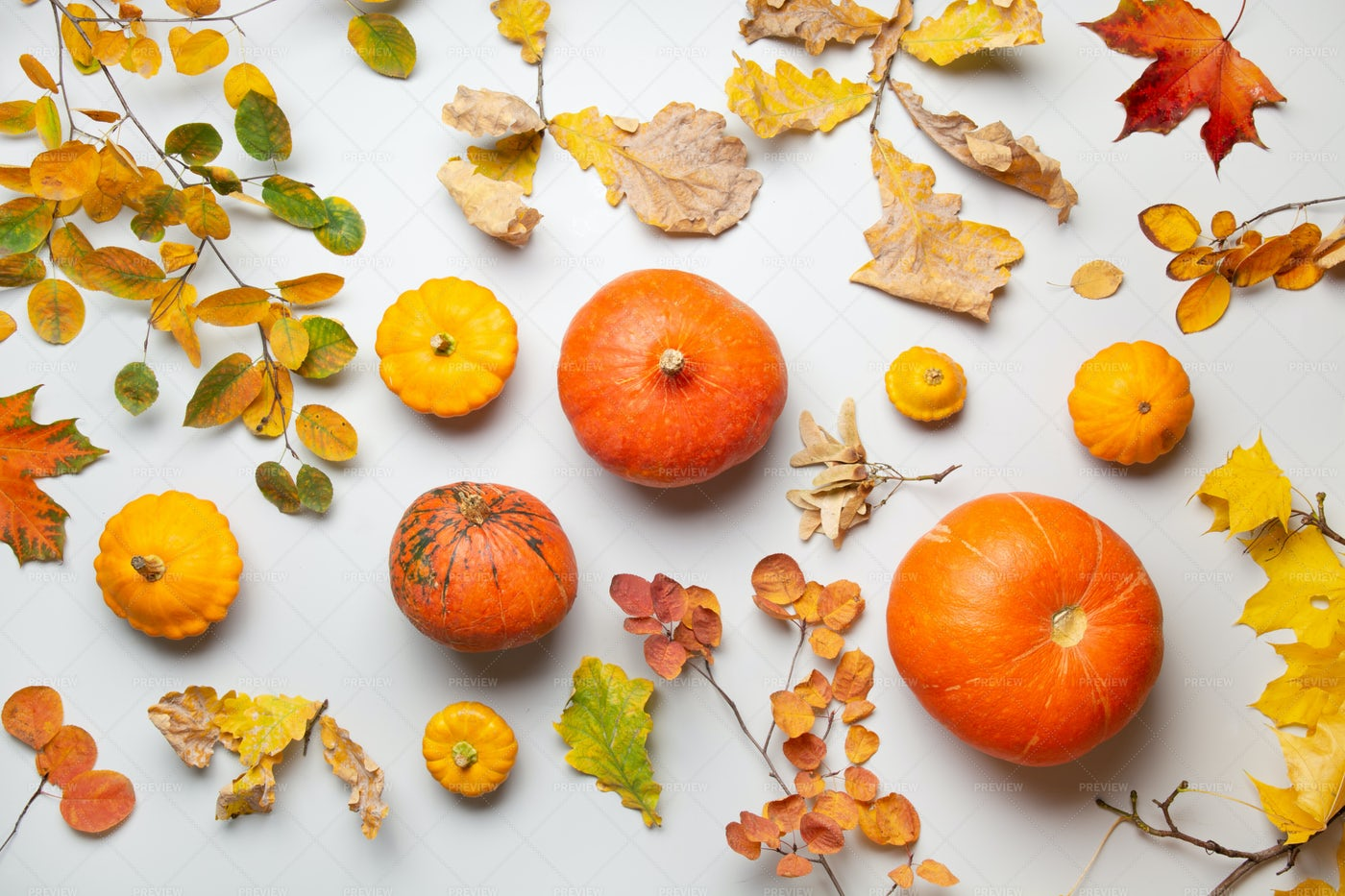 Pumpkins And Autumn Leaves: Stock Photos