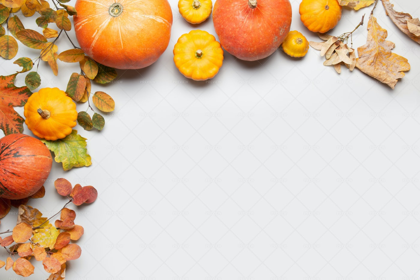 Frame Of Pumpkins And Leaves: Stock Photos