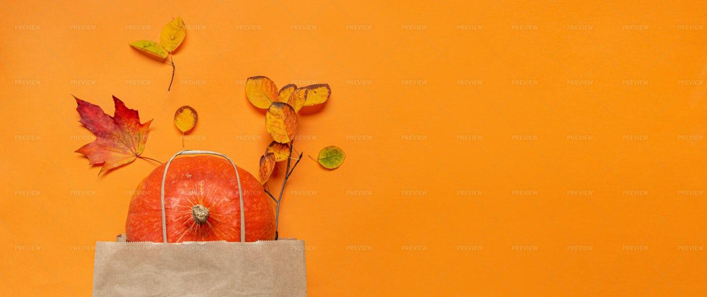 Pumpkin In A Bag: Stock Photos