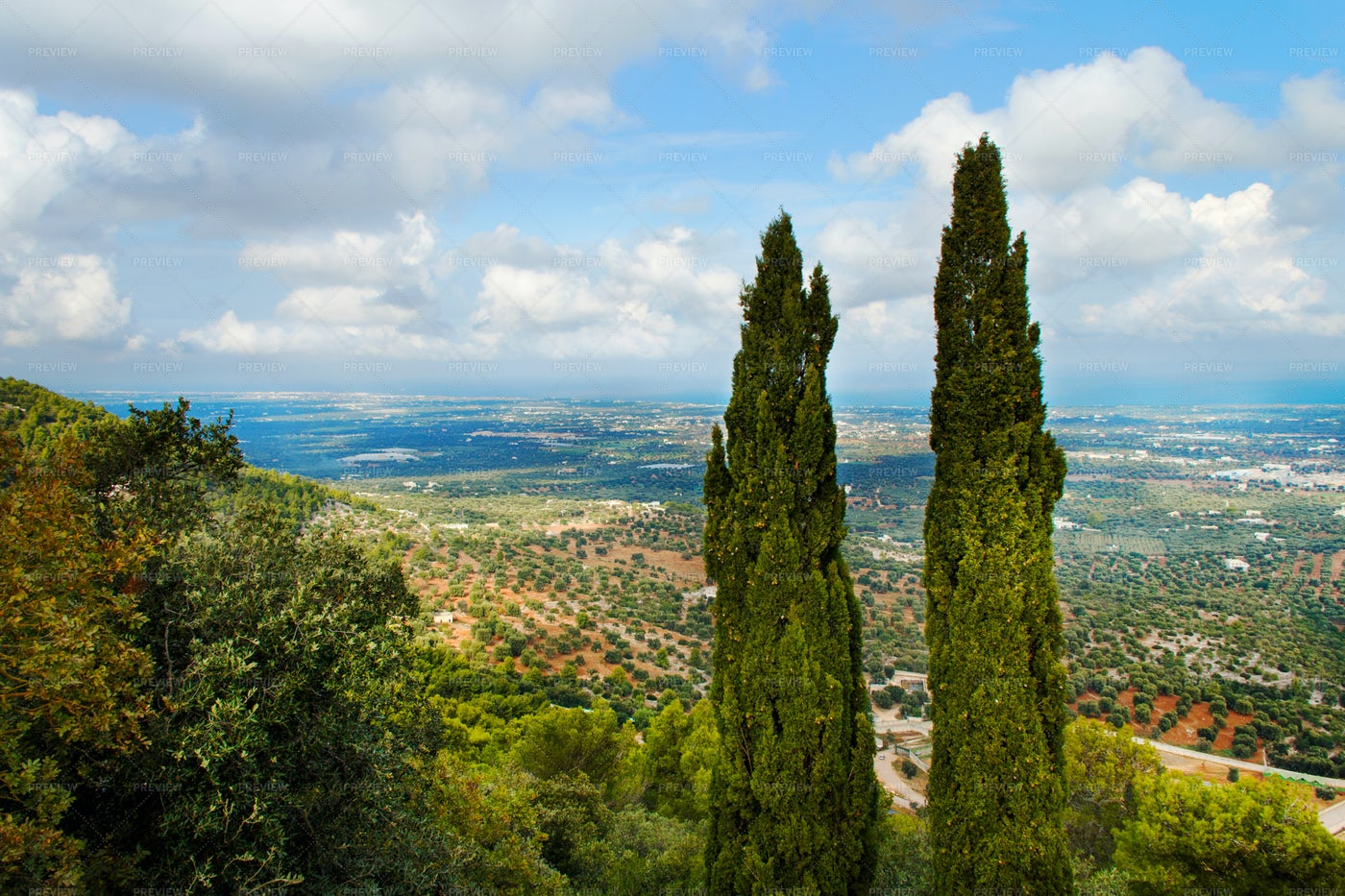 Scenery In The Itria Valley: Stock Photos