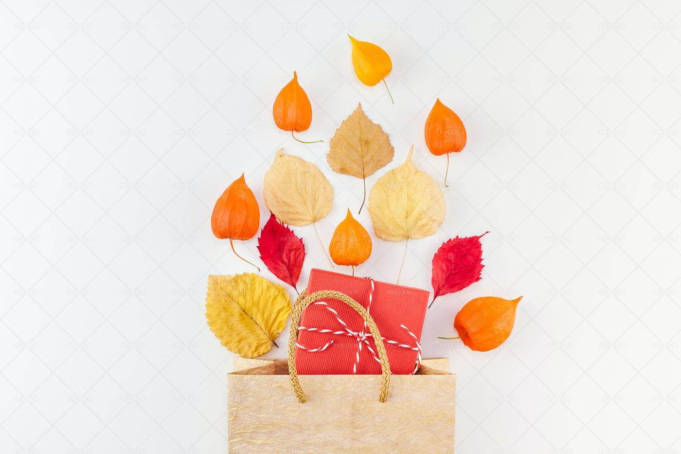 Autumn Gift Bag: Stock Photos