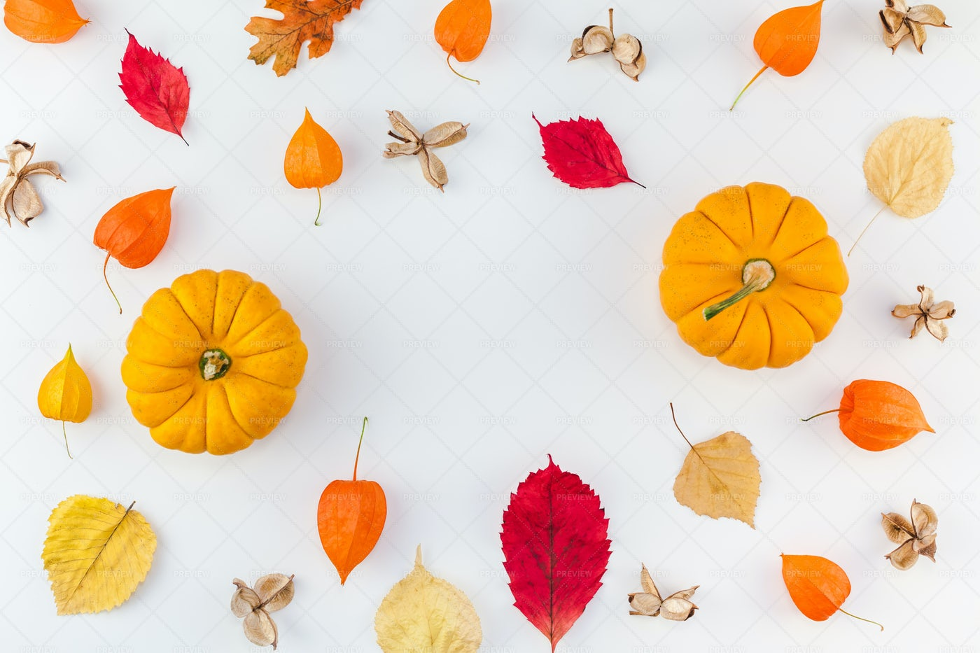 Pumpkins And Leaves: Stock Photos