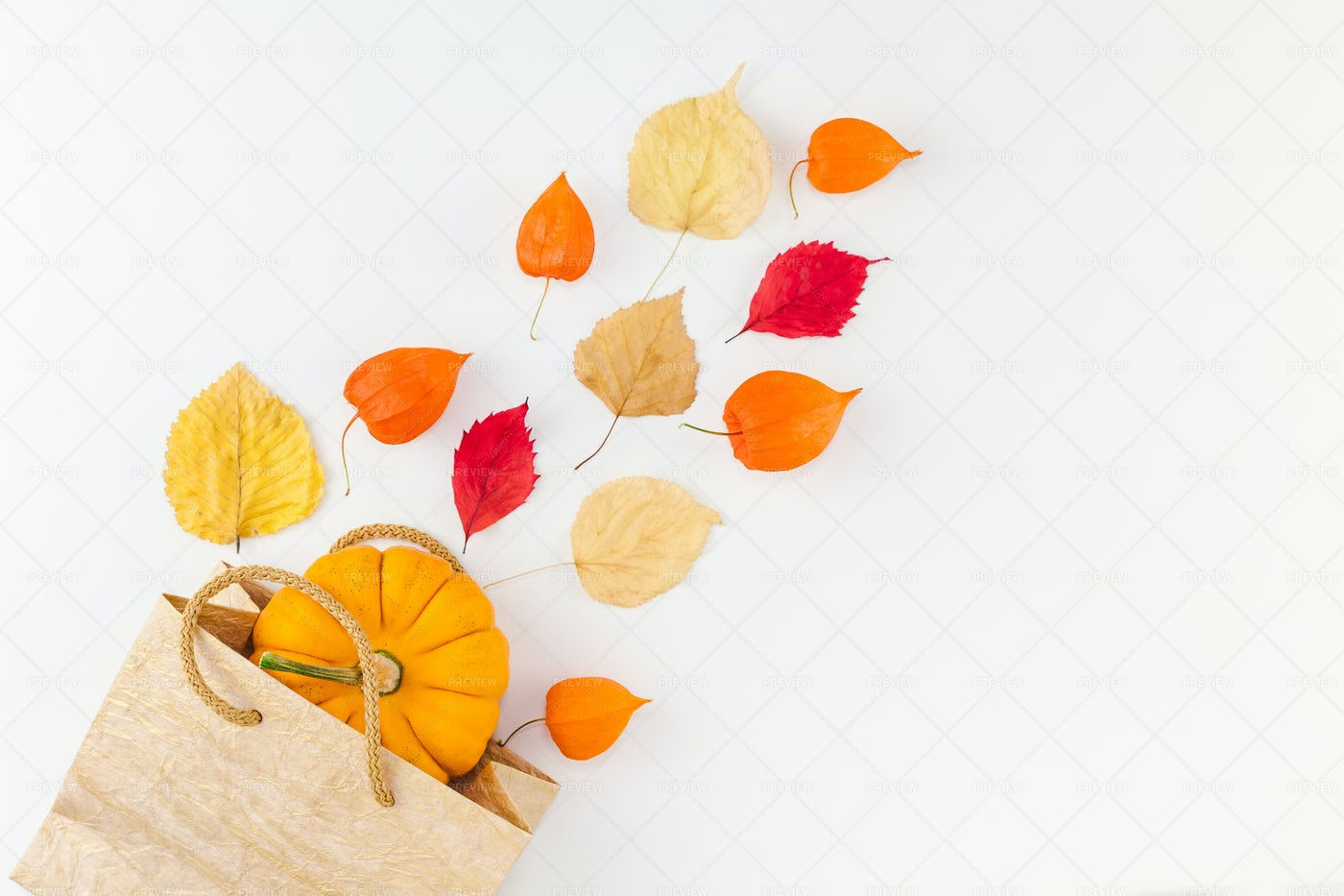 Fall Shopping Background: Stock Photos