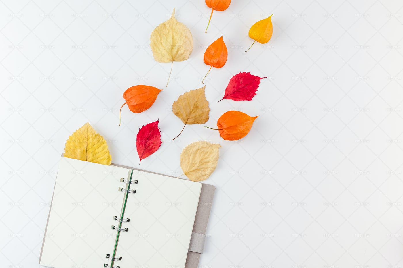 Notebook With Dried Flowers: Stock Photos