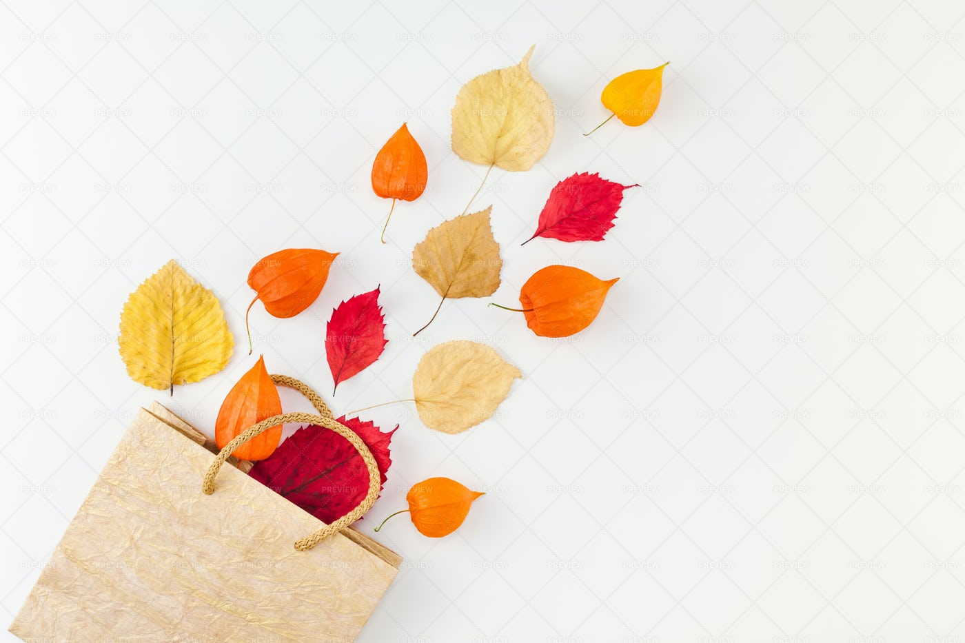 Shopping Bag With Autumn Leaves: Stock Photos