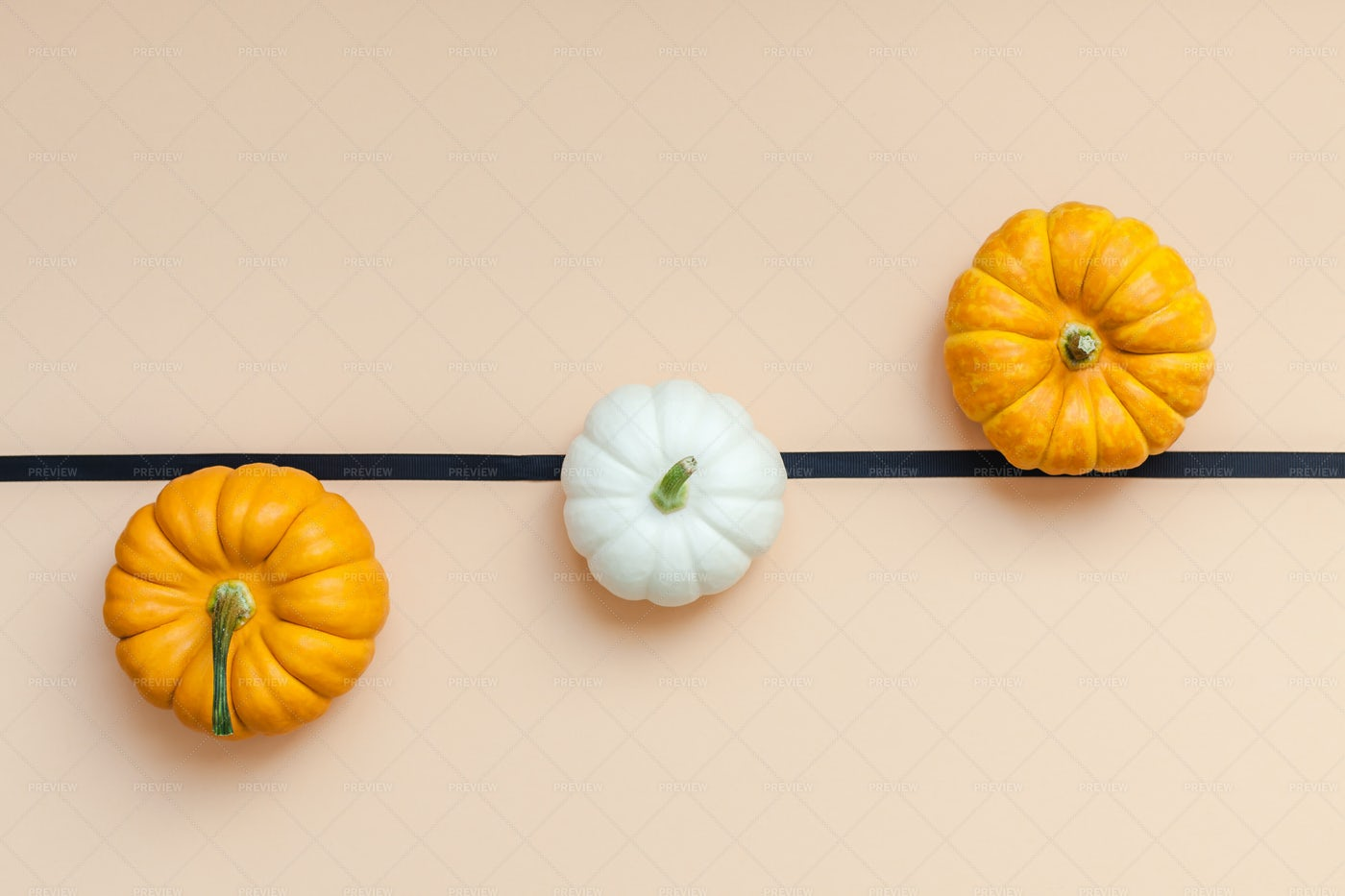 White And Yellow Pumpkins: Stock Photos