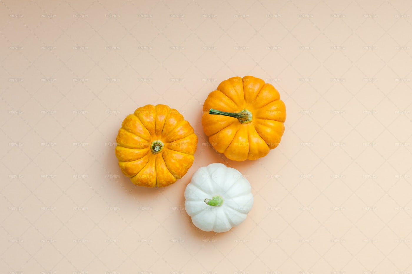 Small Pumpkins: Stock Photos