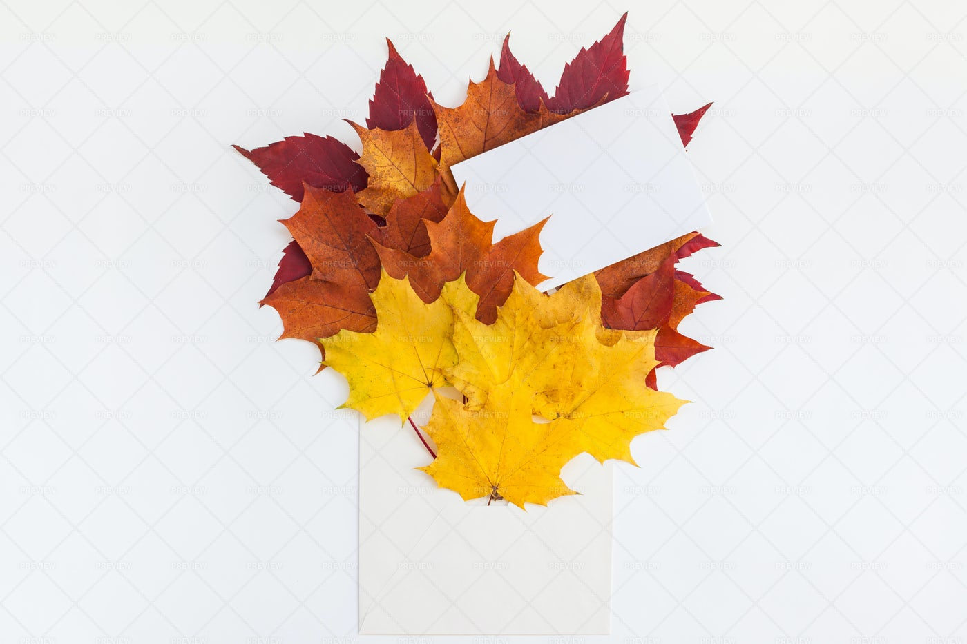 Autumn Leaves And Envelope: Stock Photos