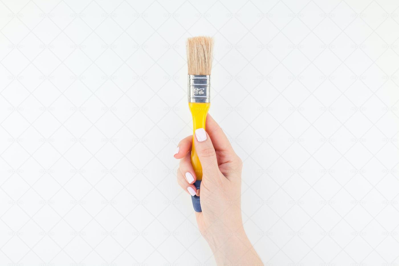 Hand Holding Paint Brush: Stock Photos
