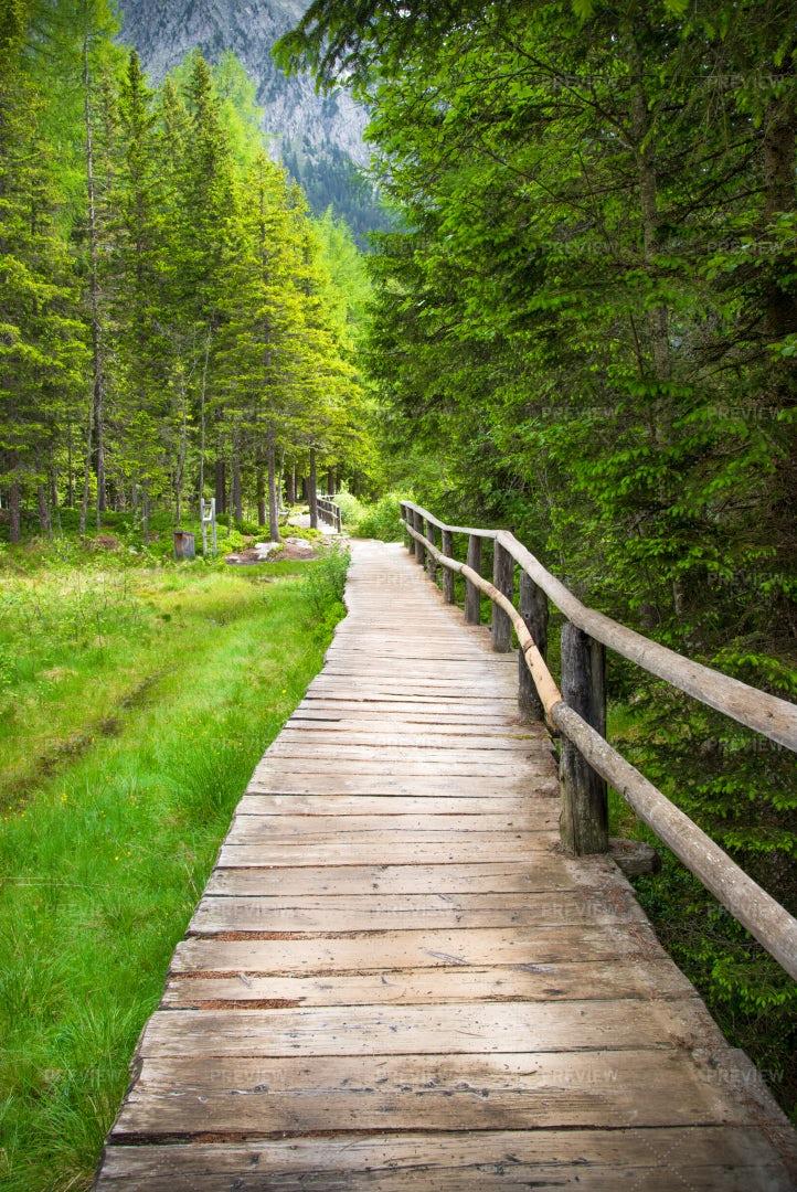 Wooden Walkway: Stock Photos