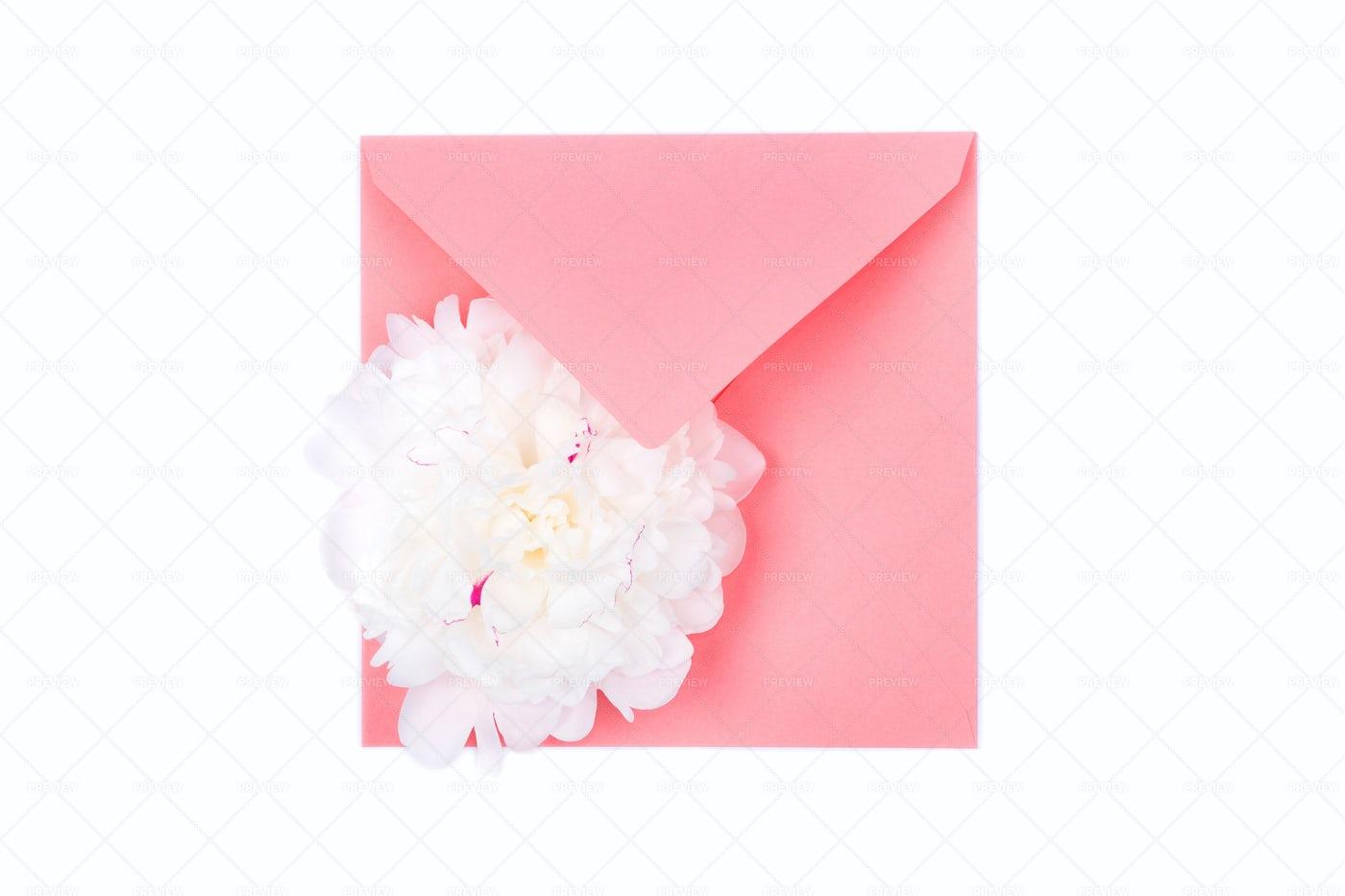 White Flower On A Pink Envelope: Stock Photos