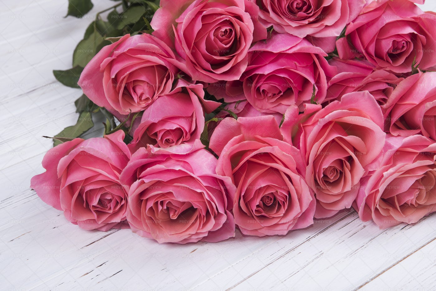 Bouquet Of Pink Roses: Stock Photos